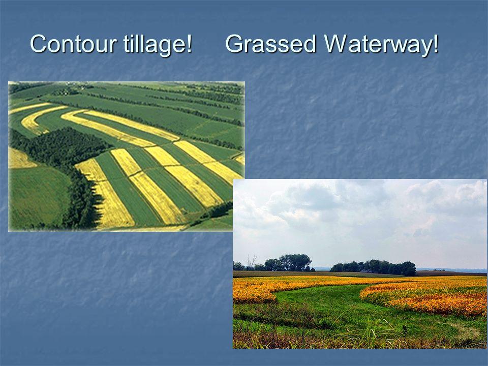 Contour tillage! Grassed Waterway!