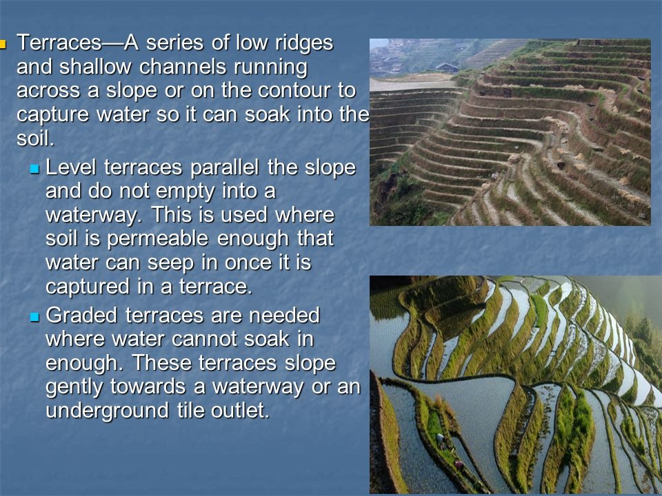 Terraces—A series of low ridges and shallow channels running across a slope or on the contour to capture water so it can soak into the soil.