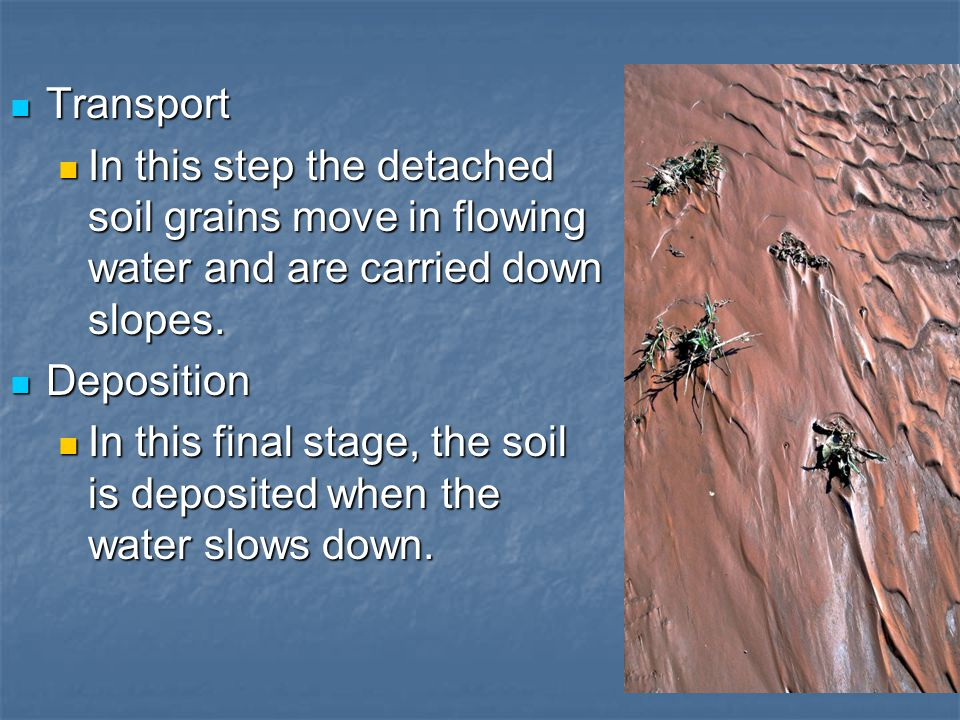Transport In this step the detached soil grains move in flowing water and are carried down slopes. Deposition.