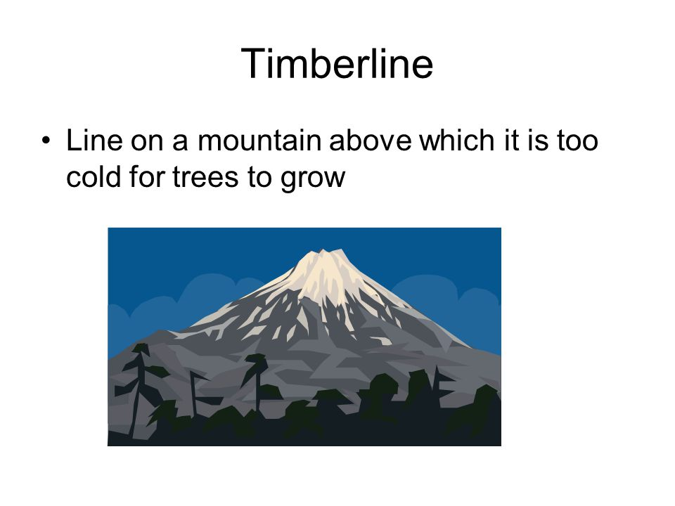 Timberline Line on a mountain above which it is too cold for trees to grow