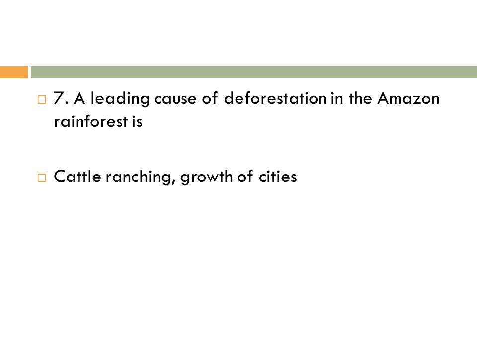 7. A leading cause of deforestation in the Amazon rainforest is