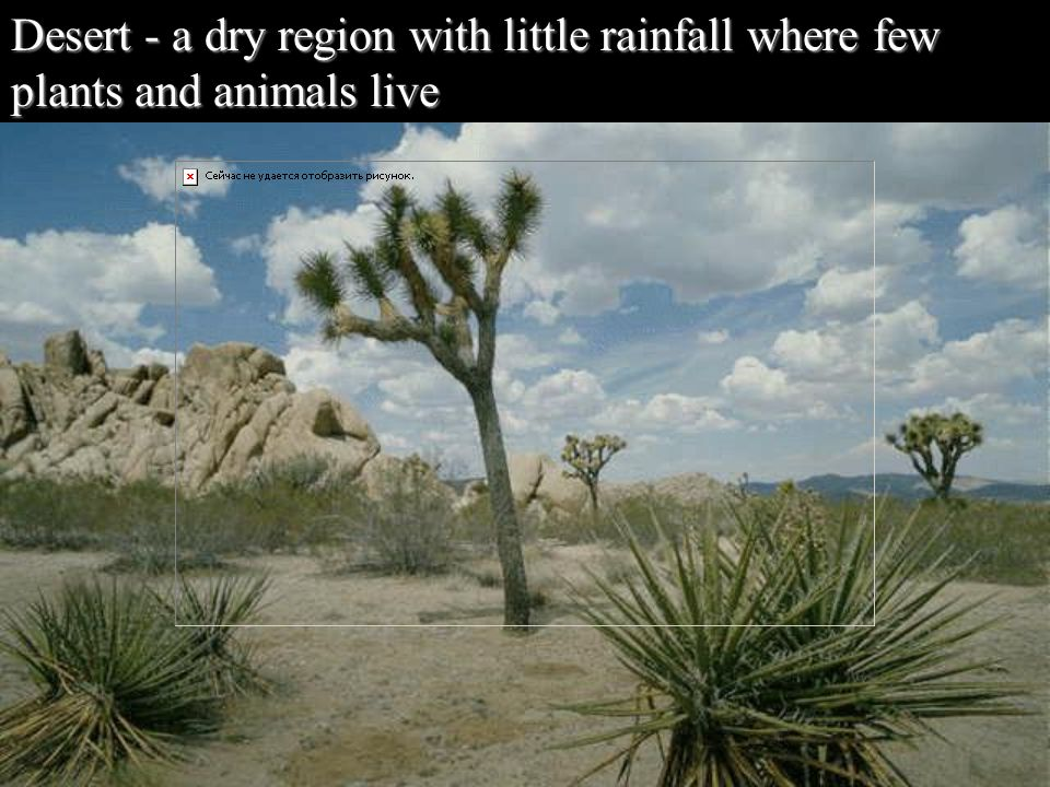 Desert - a dry region with little rainfall where few plants and animals live
