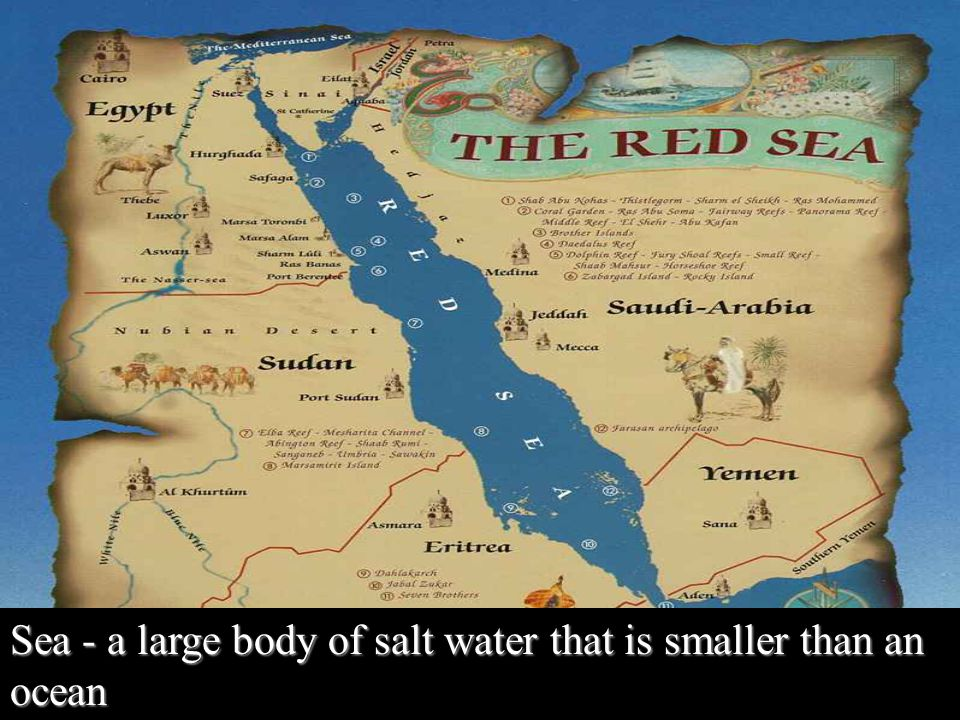Sea - a large body of salt water that is smaller than an ocean