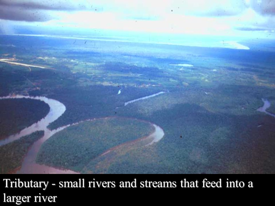 Tributary - small rivers and streams that feed into a larger river