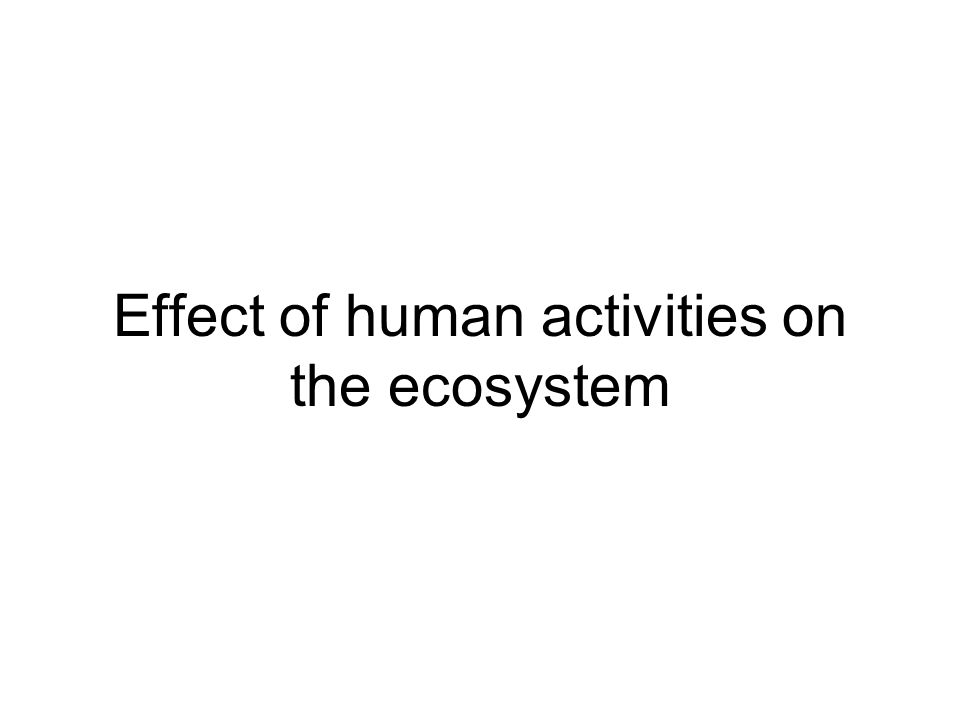 Effect of human activities on the ecosystem