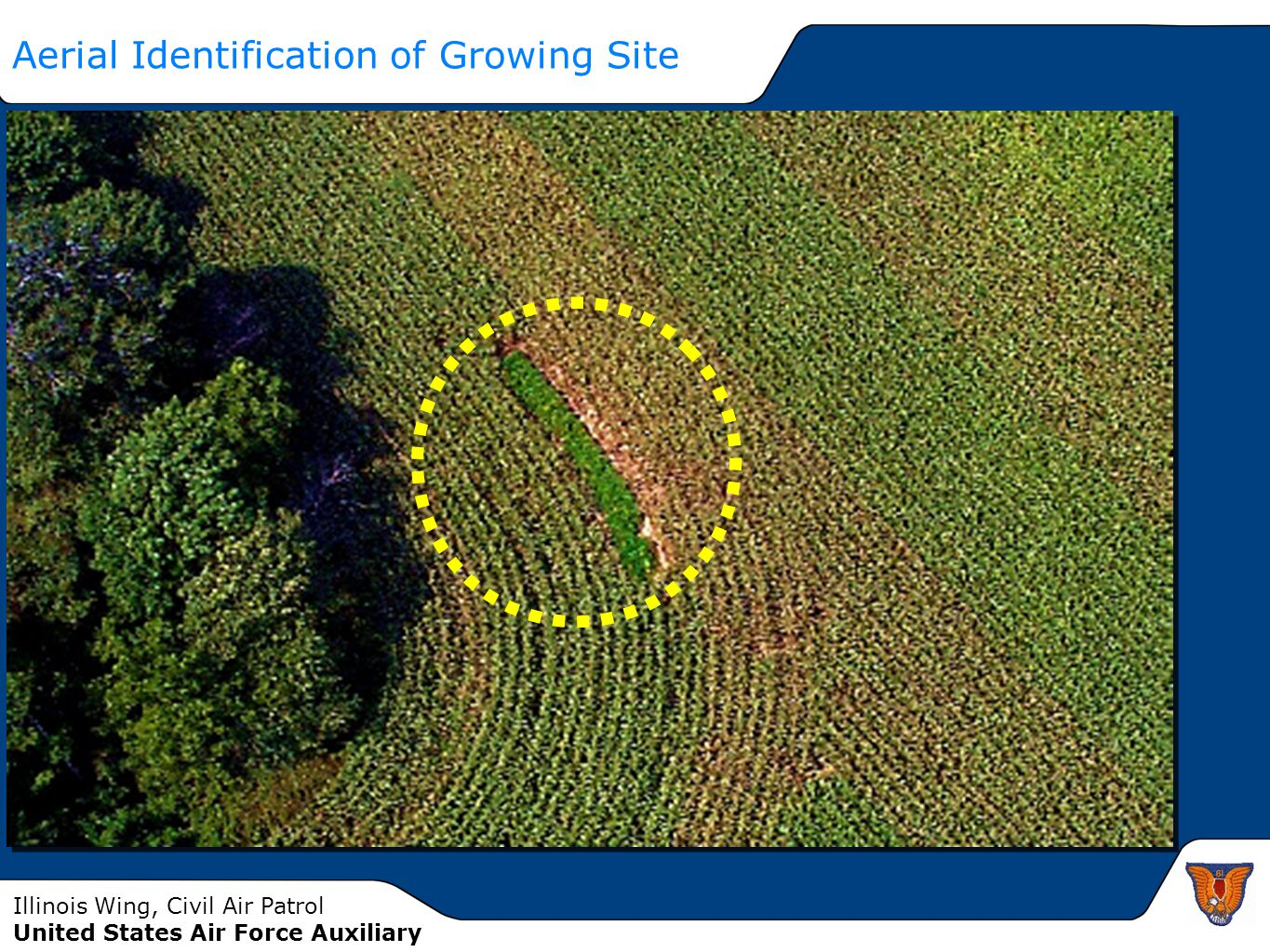 Aerial Identification of Growing Site