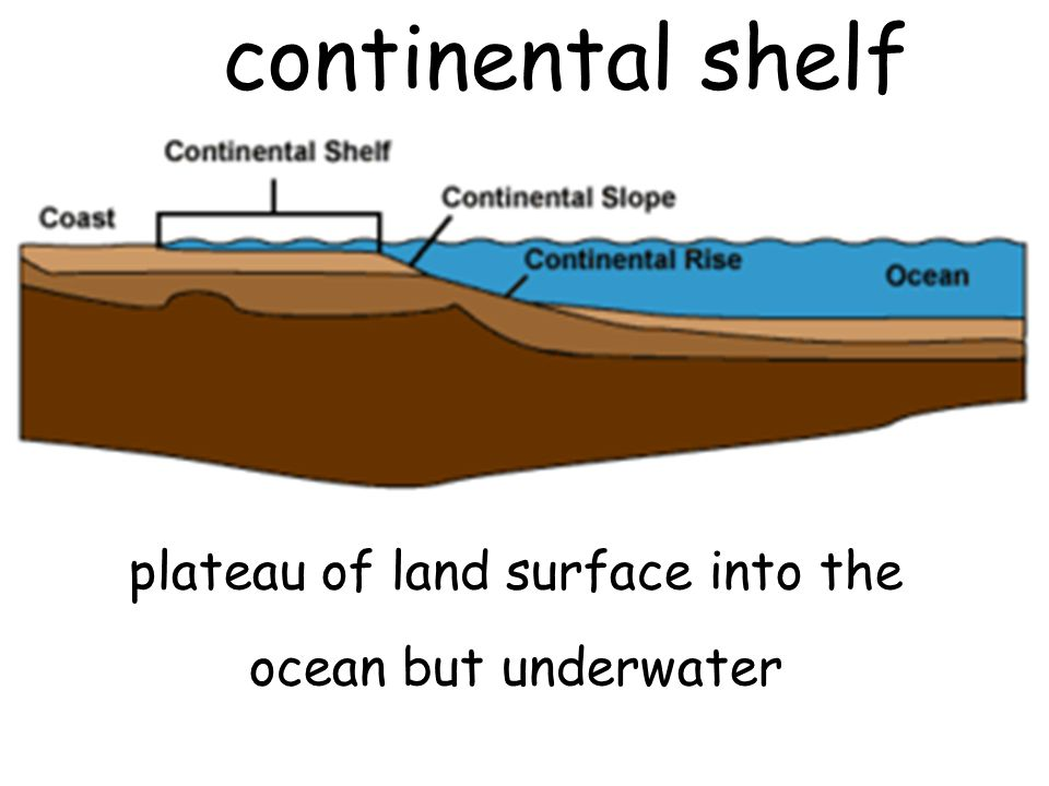 plateau of land surface into the ocean but underwater