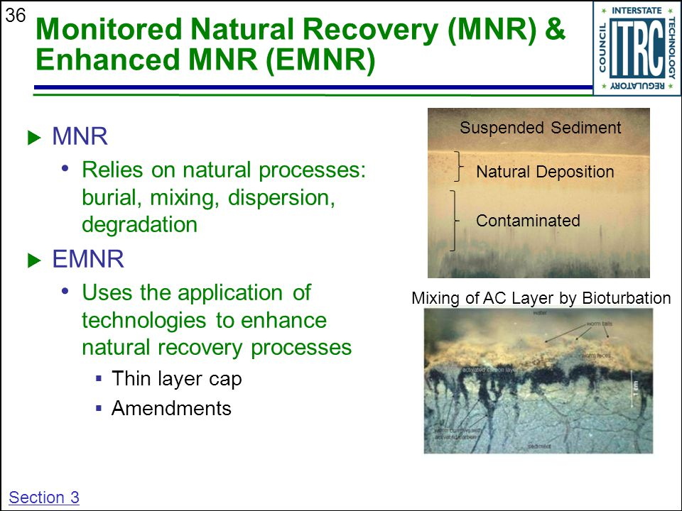 Monitored Natural Recovery (MNR) & Enhanced MNR (EMNR)