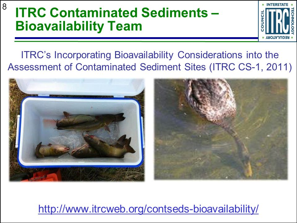 ITRC Contaminated Sediments – Bioavailability Team