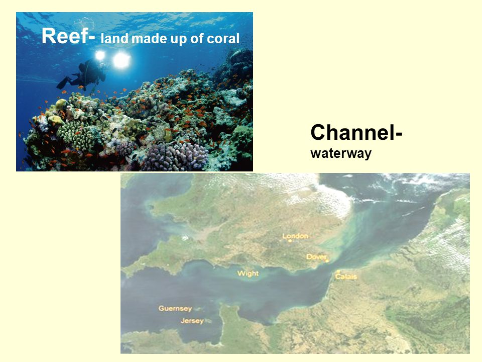 Reef- land made up of coral