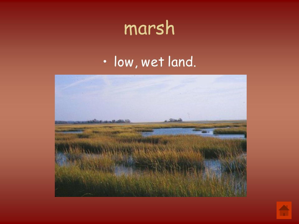 marsh low, wet land.