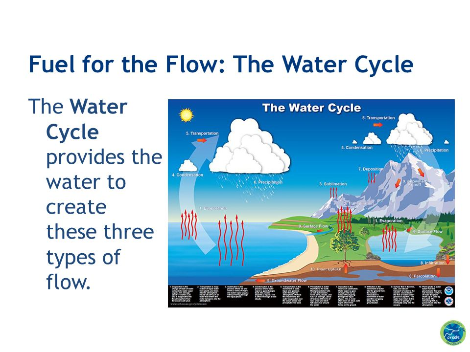 Fuel for the Flow: The Water Cycle