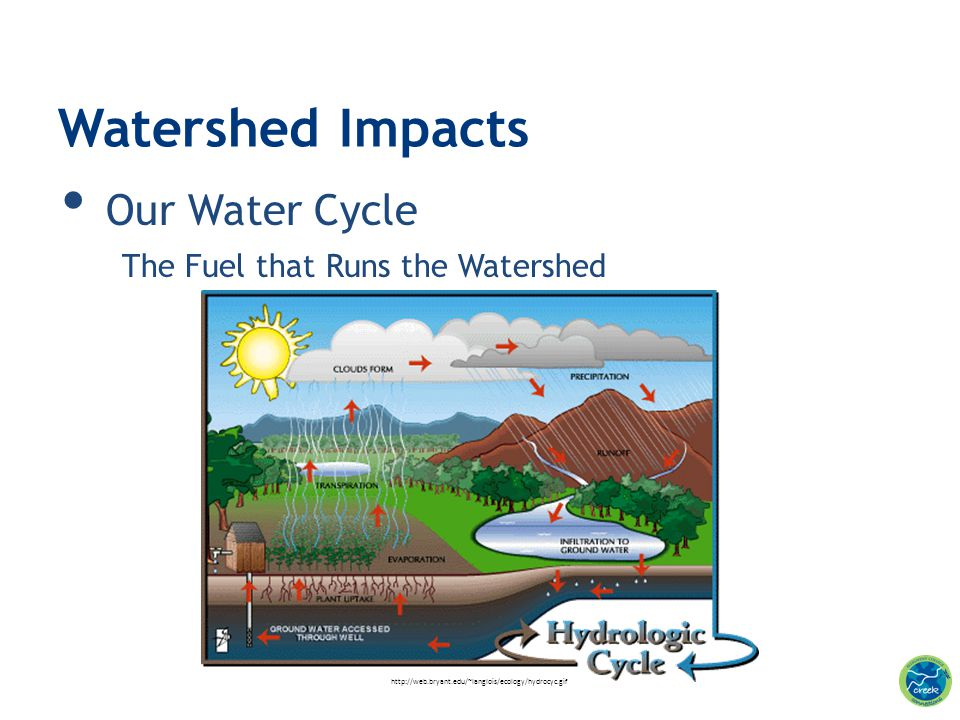 Watershed Impacts Our Water Cycle The Fuel that Runs the Watershed