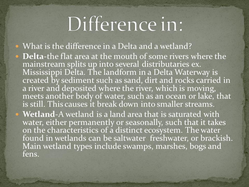 Difference in: What is the difference in a Delta and a wetland