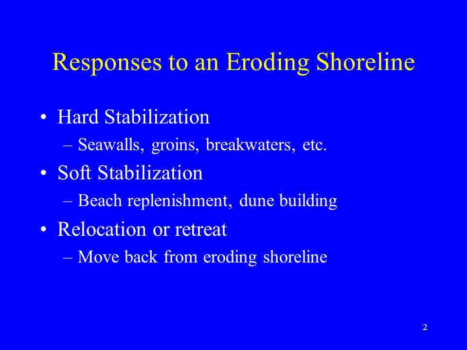 Responses to an Eroding Shoreline