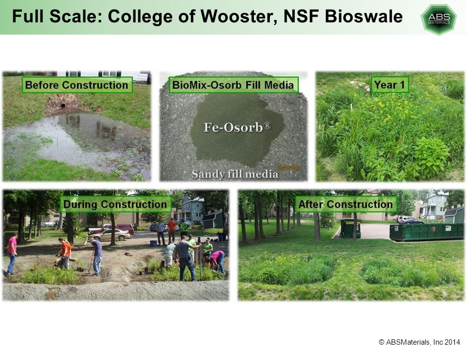 Full Scale: College of Wooster, NSF Bioswale