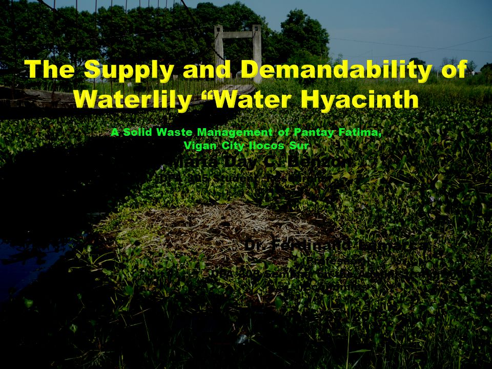 The Supply and Demandability of Waterlily Water Hyacinth