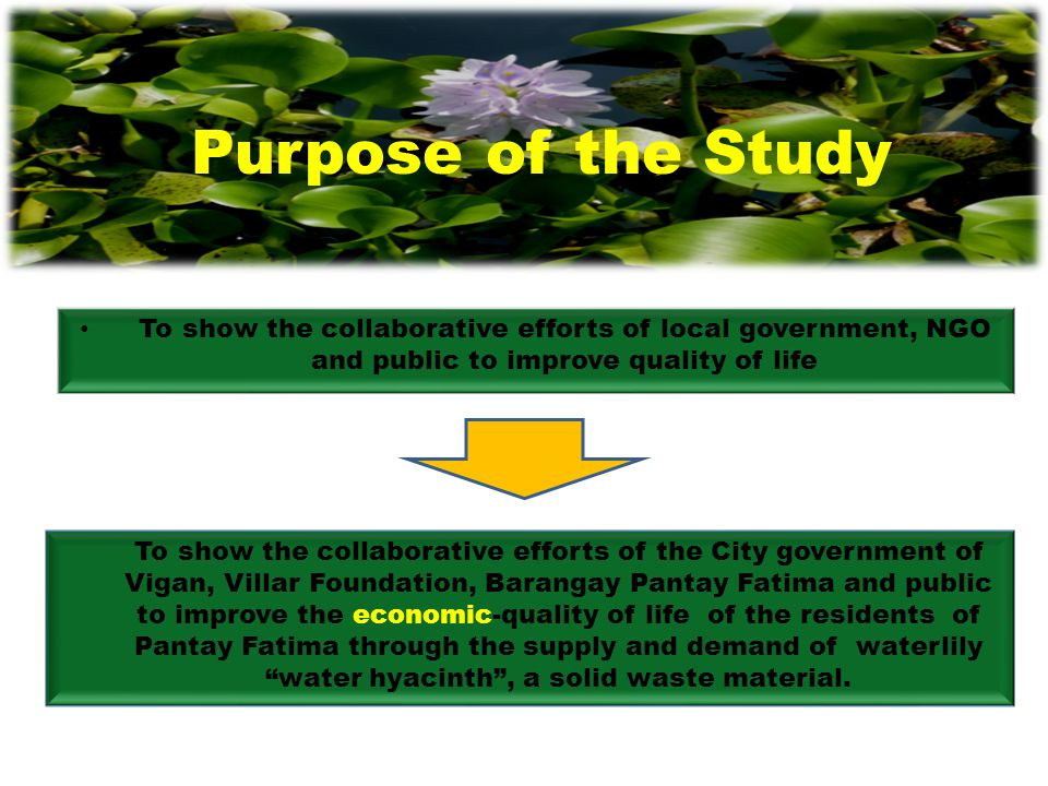 Purpose of the Study To show the collaborative efforts of local government, NGO and public to improve quality of life.