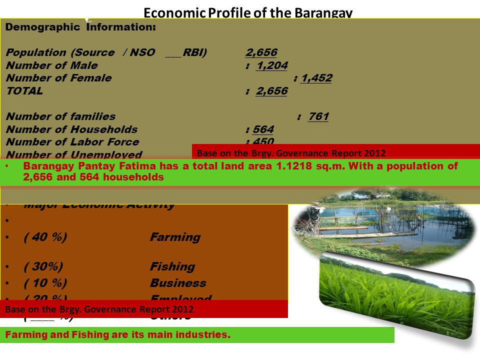 Economic Profile of the Barangay