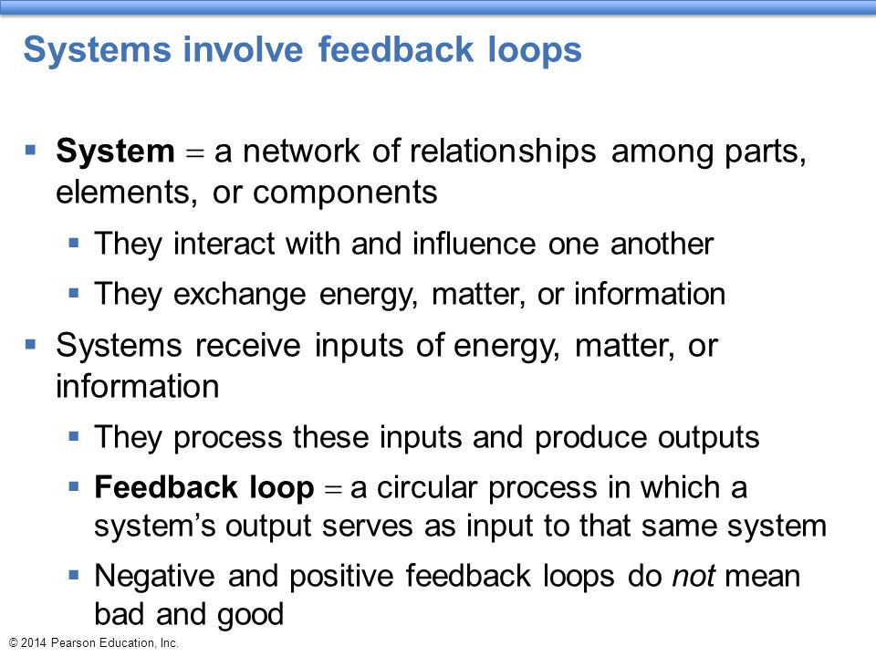 Systems involve feedback loops