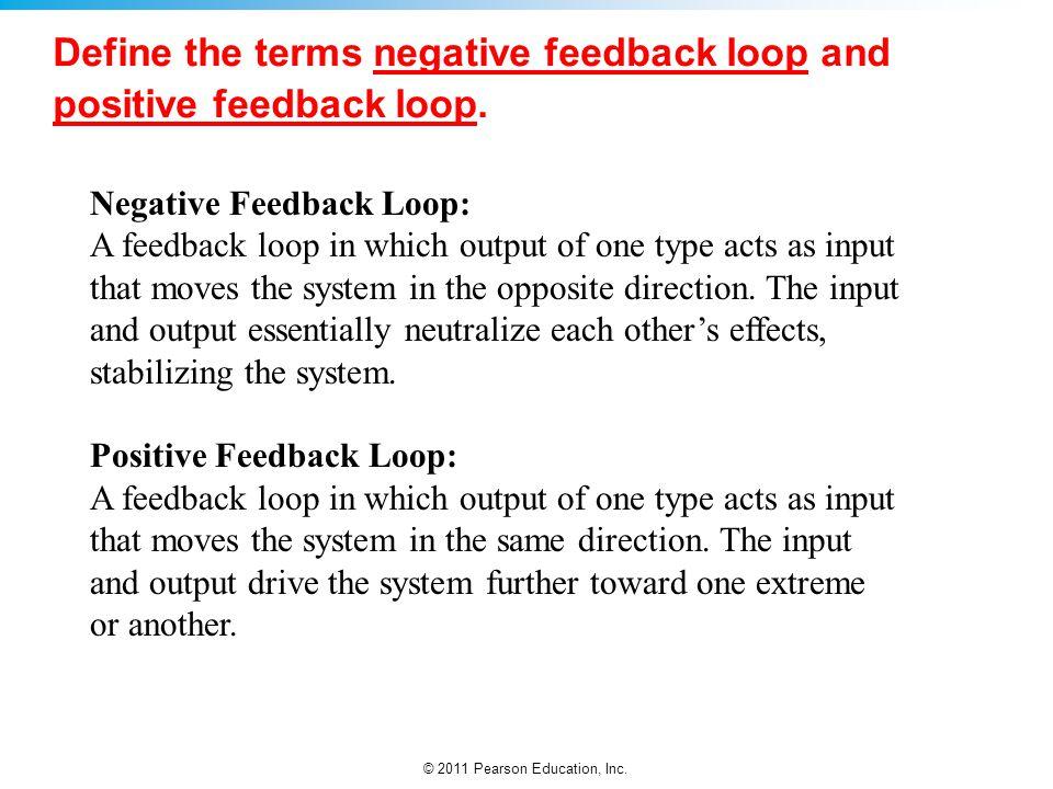 Define the terms negative feedback loop and positive feedback loop.