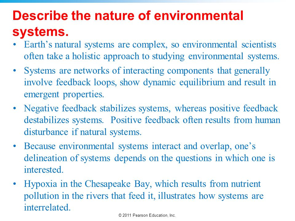 Describe the nature of environmental systems.