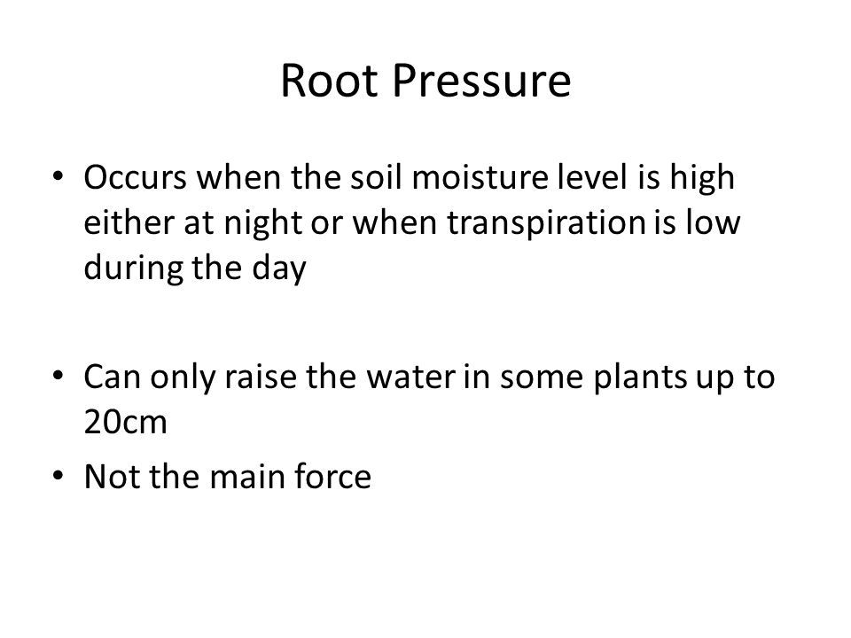 Root Pressure Occurs when the soil moisture level is high either at night or when transpiration is low during the day.