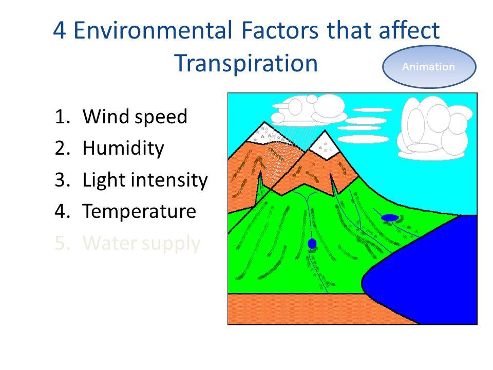 4 Environmental Factors that affect Transpiration