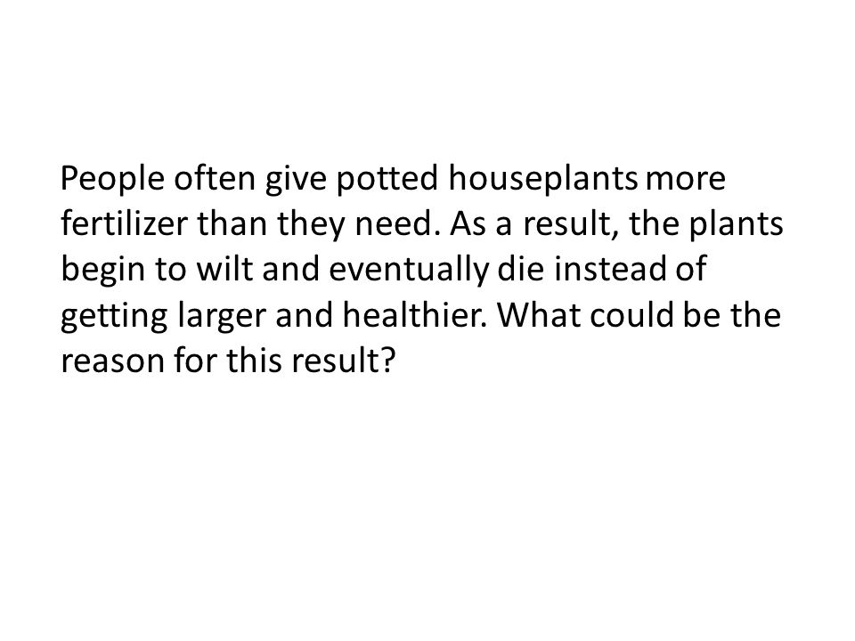 People often give potted houseplants more fertilizer than they need