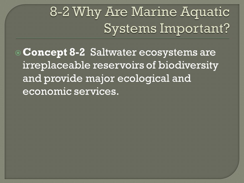 8-2 Why Are Marine Aquatic Systems Important