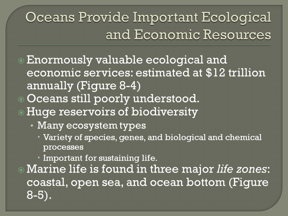 Oceans Provide Important Ecological and Economic Resources