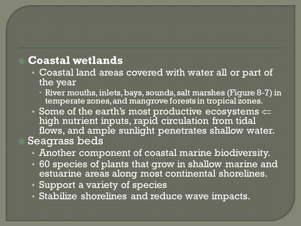 Coastal wetlands Seagrass beds