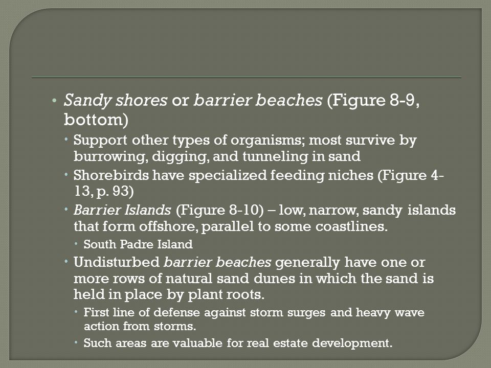 Sandy shores or barrier beaches (Figure 8-9, bottom)