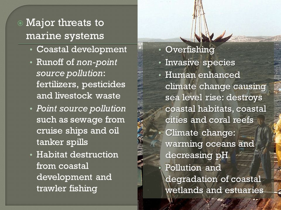 Major threats to marine systems