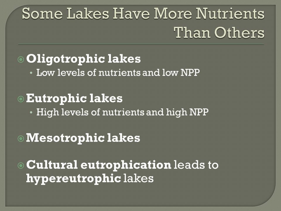 Some Lakes Have More Nutrients Than Others