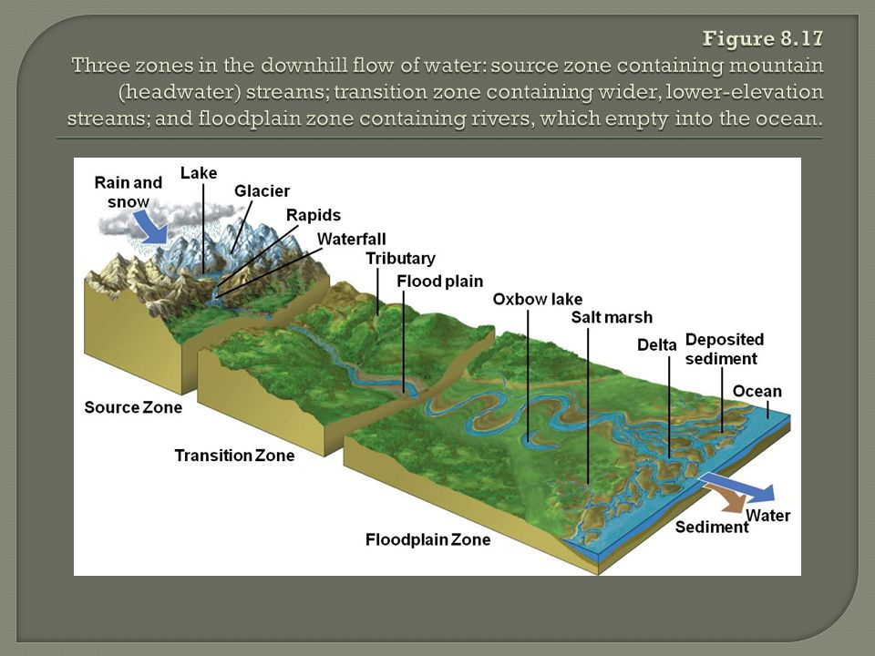 Figure 8.17 Three zones in the downhill flow of water: source zone containing mountain (headwater) streams; transition zone containing wider, lower-elevation streams; and floodplain zone containing rivers, which empty into the ocean.