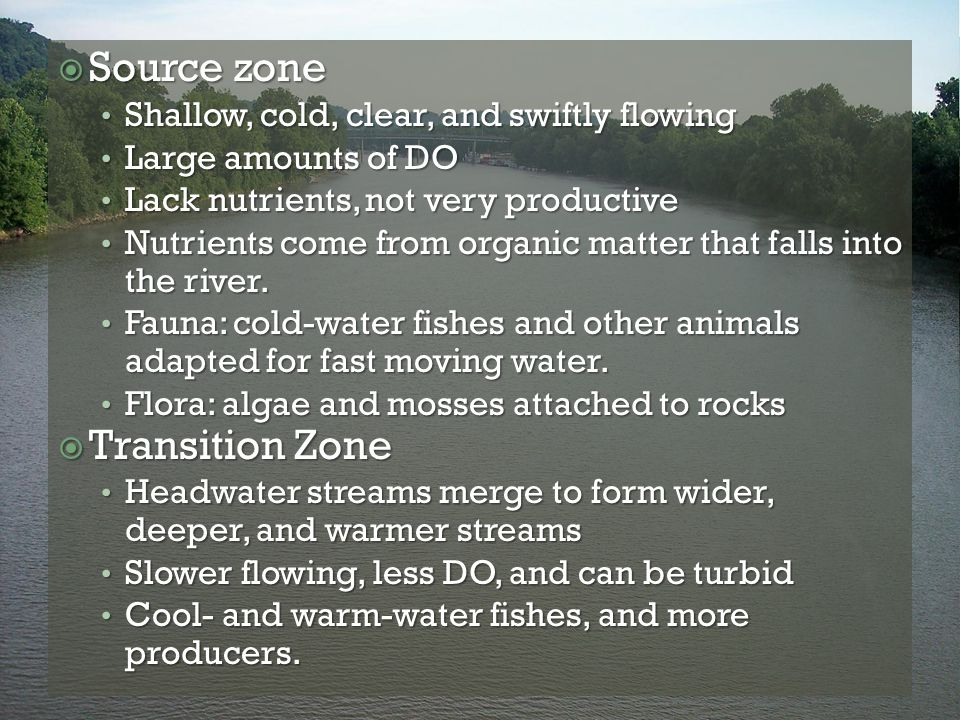 Source zone Transition Zone Shallow, cold, clear, and swiftly flowing