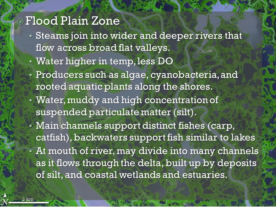 Flood Plain Zone Steams join into wider and deeper rivers that flow across broad flat valleys. Water higher in temp, less DO.