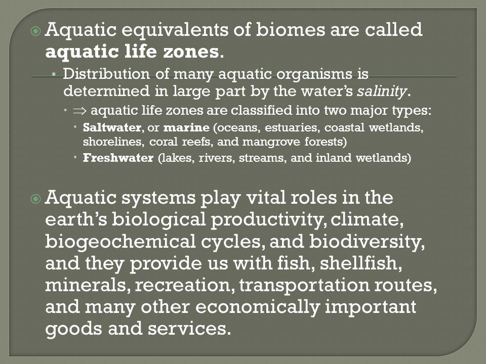 Aquatic equivalents of biomes are called aquatic life zones.