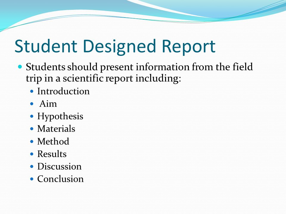 Student Designed Report