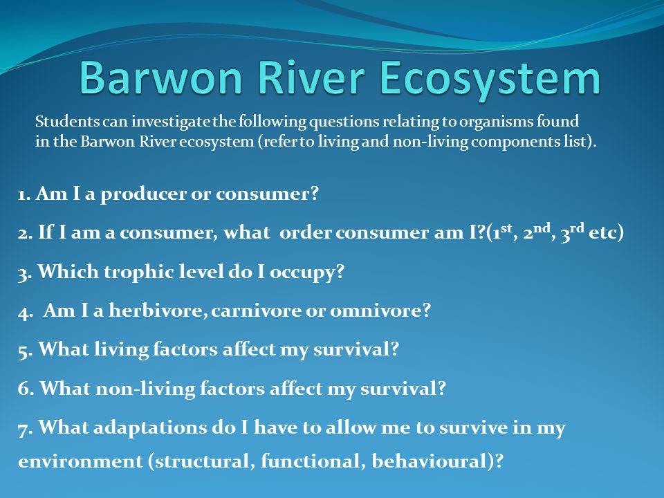 Barwon River Ecosystem