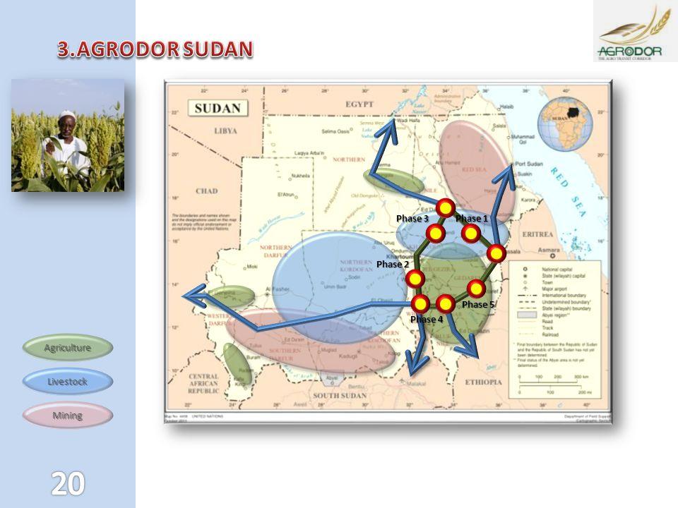3.AGRODOR SUDAN Phase 1 Phase 3 Phase 2 Phase 5 Phase 4 Agriculture