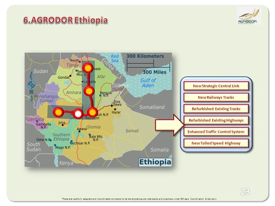 6.AGRODOR Ethiopia New Strategic Central Link New Railways Tracks
