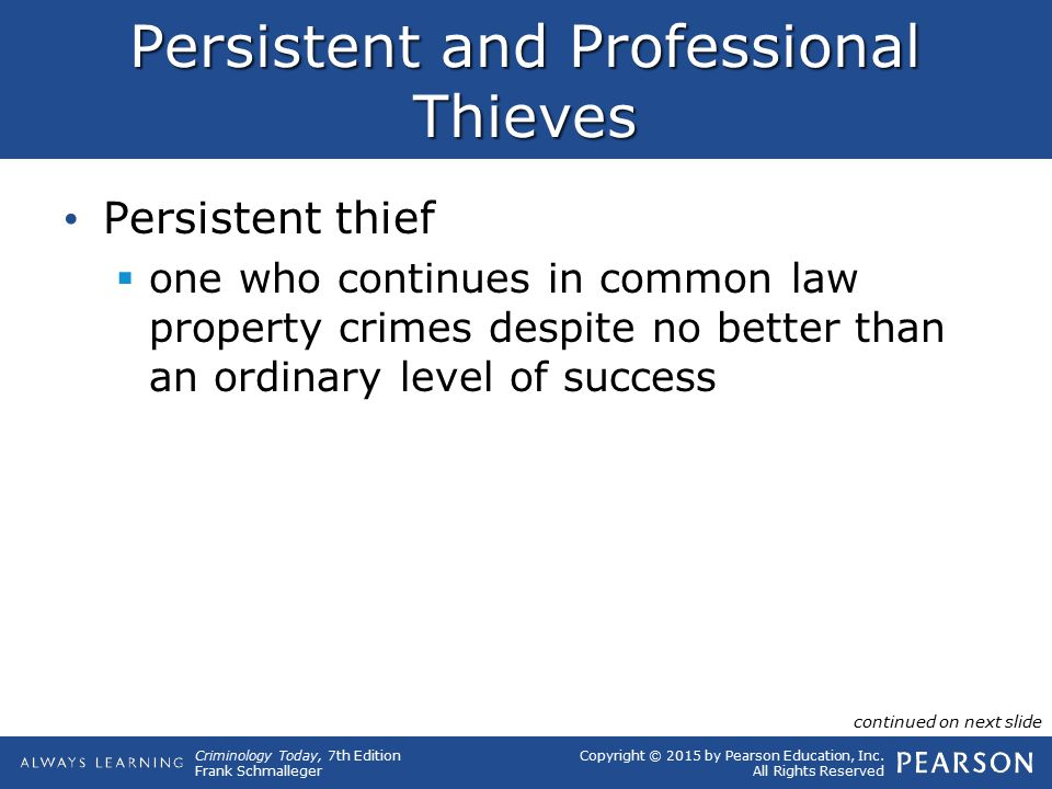 Persistent and Professional Thieves