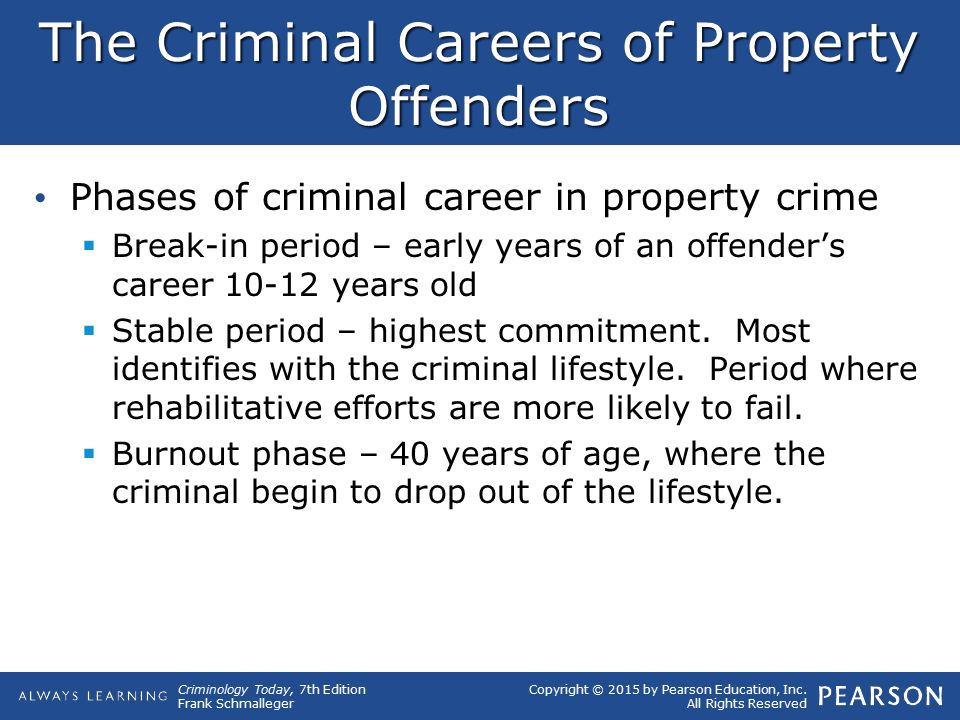 The Criminal Careers of Property Offenders