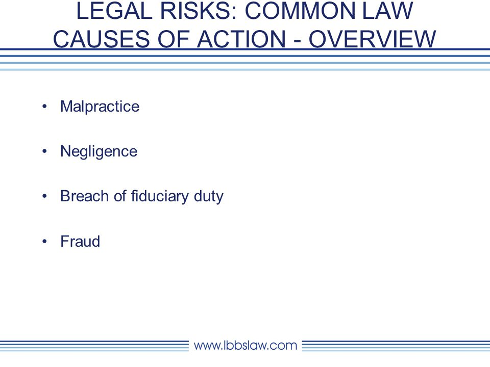 LEGAL RISKS: COMMON LAW CAUSES OF ACTION - OVERVIEW