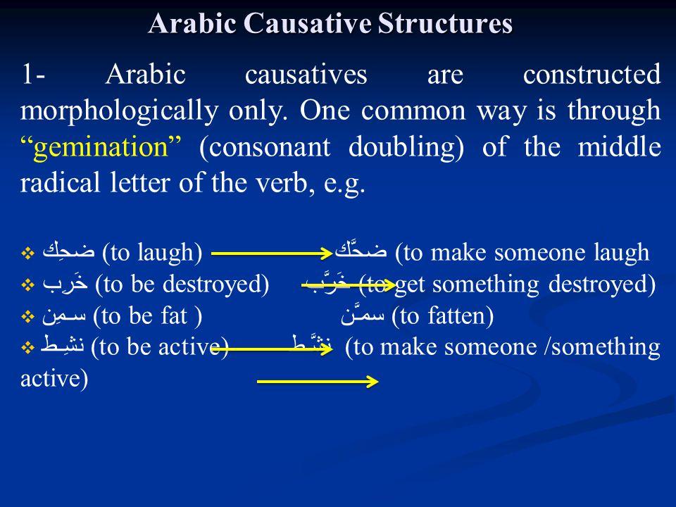 Arabic Causative Structures