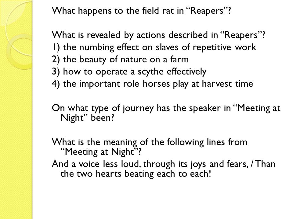 What happens to the field rat in Reapers