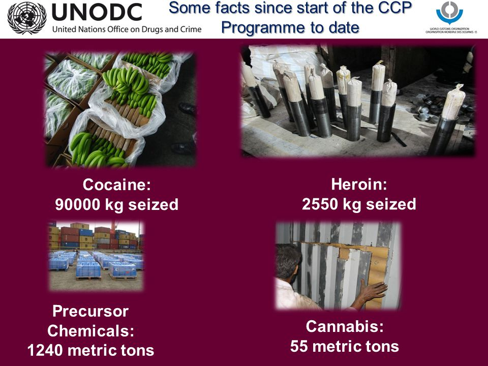 Some facts since start of the CCP Programme to date