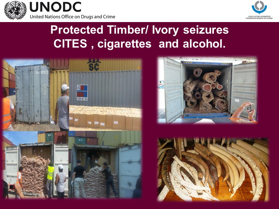 Protected Timber/ Ivory seizures CITES , cigarettes and alcohol.